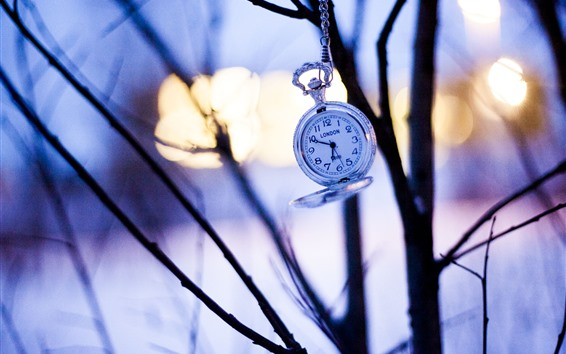 Wallpaper Pocket watch, trees, silhouette, sunset