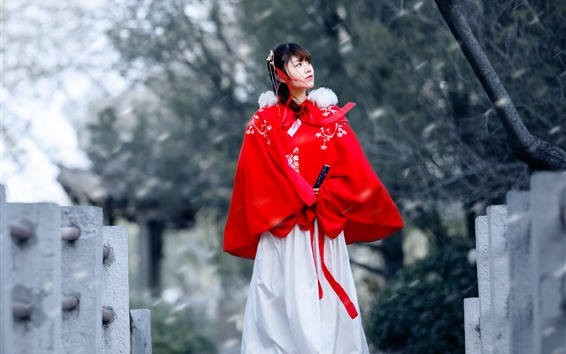 Wallpaper Retro style Chinese girl, hanfu, bridge