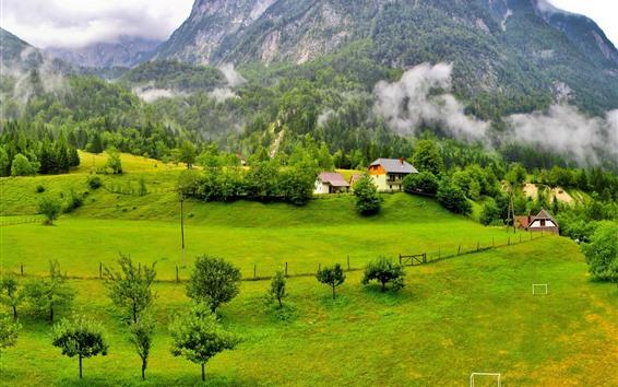 Wallpaper Slovenia beautiful scenery, mountains, trees, green, village, fog