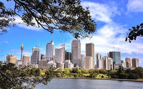 Wallpaper Sydney, Australia, lake, trees, skyscrapers