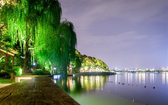Wallpaper West Lake beautiful night scenery, lights, willow