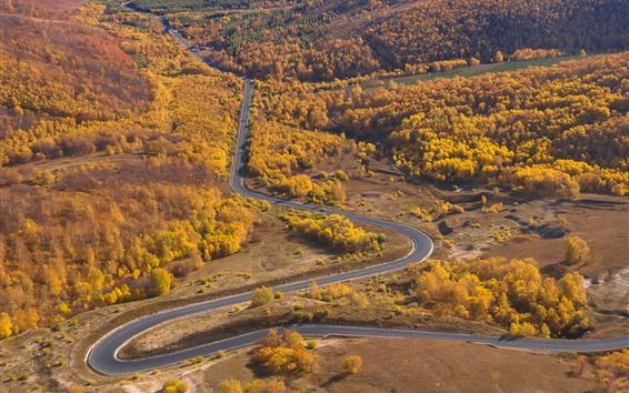 Papéis de Parede Wulan Butong Grassland, lindo outono, estrada, árvores, montanhas