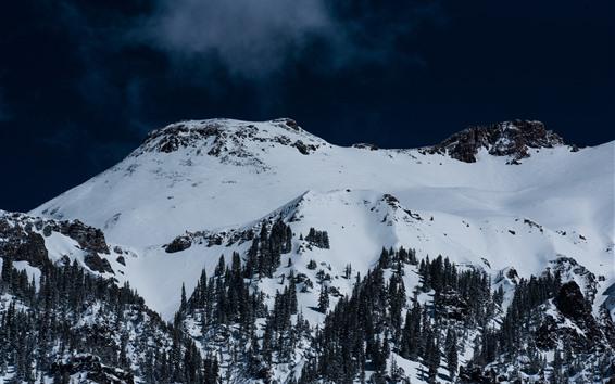 Fondos de pantalla Montaña, nieve, árboles, cielo azul oscuro