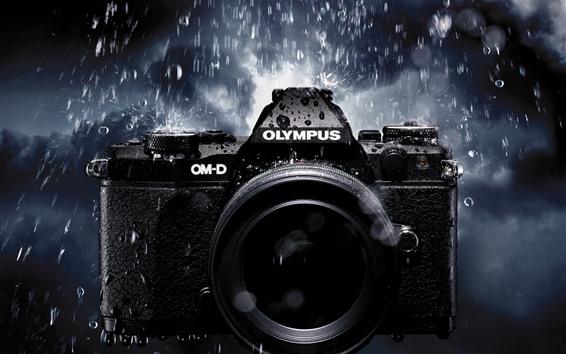 壁紙 雨の中のオリンパスカメラ