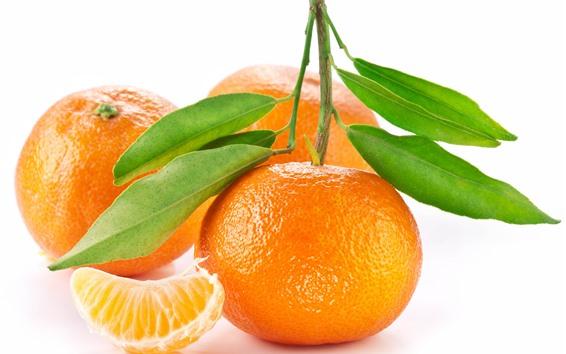 Fond d'écran Oranges, fond blanc
