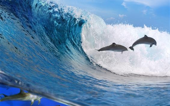 Papéis de Parede Ondas do mar, golfinhos, respingos de água, debaixo d'água