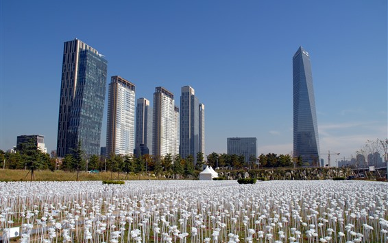 Обои Южная Корея, парк, небоскребы