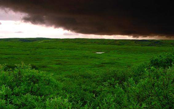 Fondos de pantalla Nubes gruesas, tormenta, hierba verde