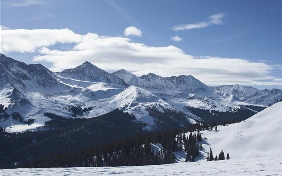 Wallpaper Alps, mountains, snow, winter, white world