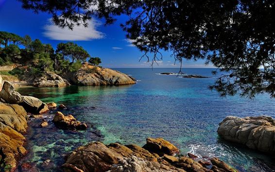 Papéis de Parede Catalunha, espanha, mar mediterrâneo, árvores, pedras