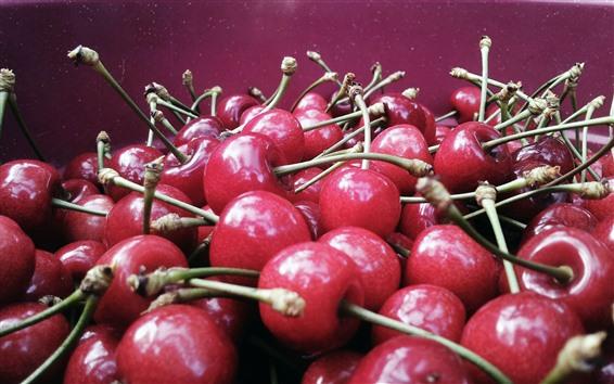 Обои Много вкусной вишни, фрукты