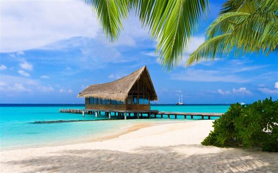 Wallpaper Palm trees, beach, sea, pier, tropical, resort