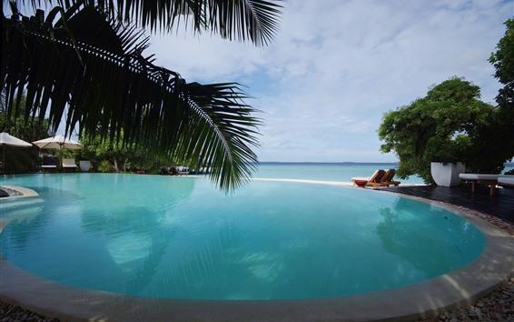 Wallpaper Pool, palm trees, sea, sky, clouds, resort