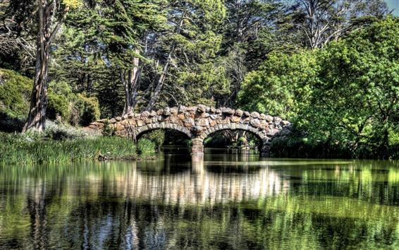 Fondos de pantalla Río, puente de roca, árboles, verde