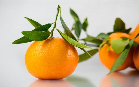 Wallpaper Tangerine, citrus, fruit, hazy