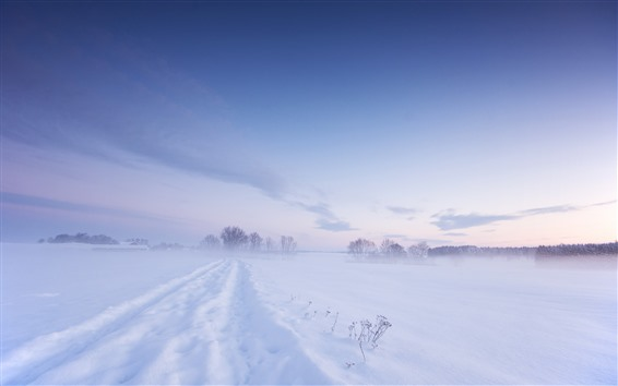 Wallpaper Cold winter, thick snow, white world, fog