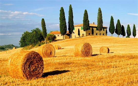 Wallpaper Hay bales, fields, trees, countryside, Italy