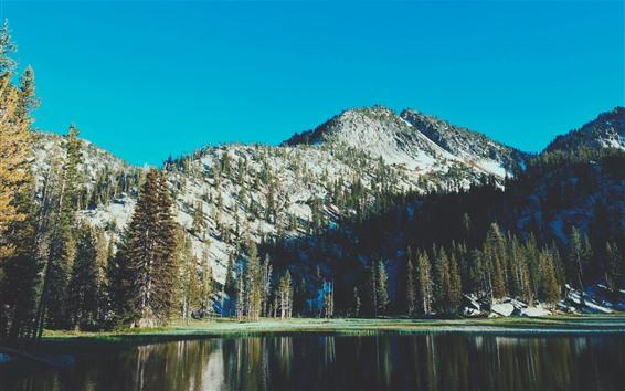 Обои Озеро, гора, деревья, природа, пейзажи