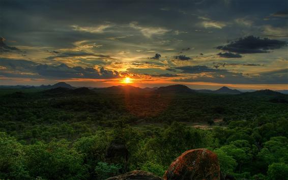 Обои Природа пейзаж, лес, деревья, солнце, горы