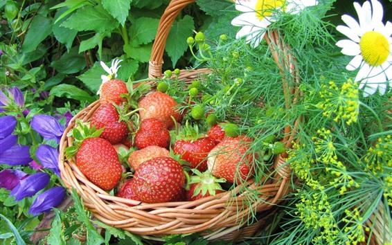 Papéis de Parede Uma cesta de morangos frescos, flores