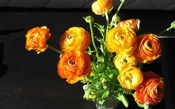 배경 화면 주황색과 노란 모란, 꽃, 꽃다발