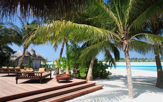 Fondos de pantalla Palmeras, playa, mar, tropical, resort