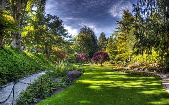 Wallpaper Park, lawn, trees