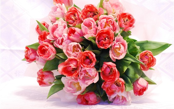 Papéis de Parede Tulipas cor de rosa, buquê, presente