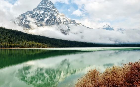 배경 화면 바위 산, 눈, 강, 숲, 구름, 맑은 물