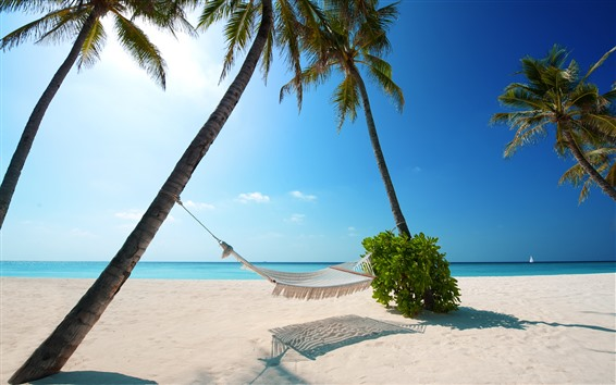 Wallpaper Sea, beach, hammock, palm trees, tropical, summer