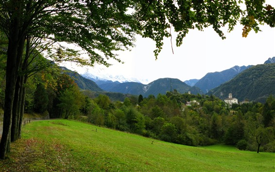 Wallpaper Summer, meadow, slope, trees, mountains