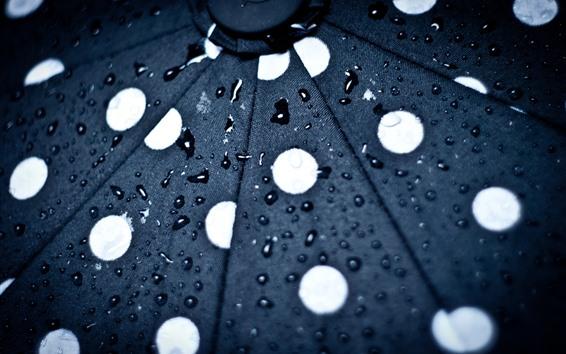 壁紙 傘、表面、水滴