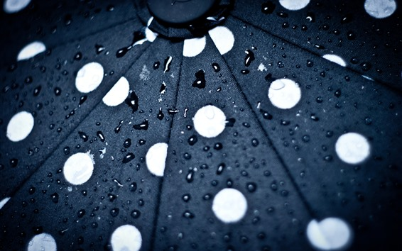 Wallpaper Umbrella, surface, water droplets