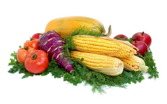 Wallpaper Vegetables, corn, tomato, pumpkin, apples, white background