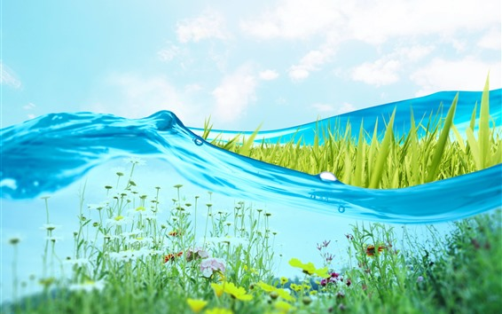 Wallpaper Blue water, grass, flowers, creative picture