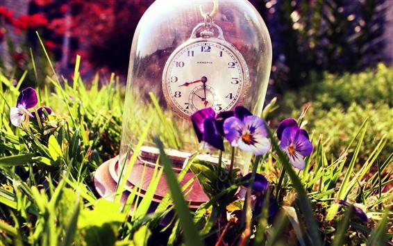 Papéis de Parede Relógio, vidro, pansies