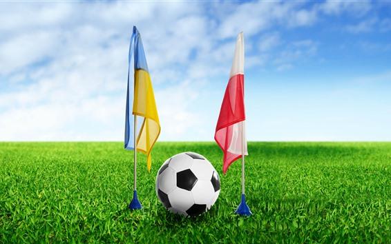 Обои Футбол, флаг, зеленая трава