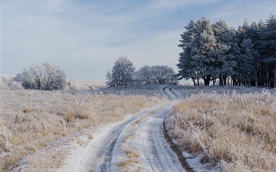 Fondos de pantalla Hierba, árboles, camino, nieve, invierno