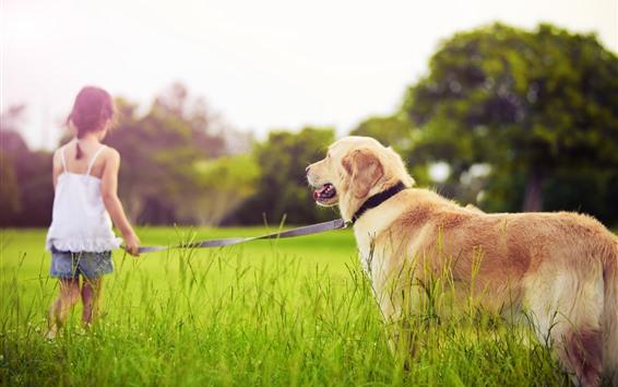 Papéis de Parede Menina e cachorro, grama