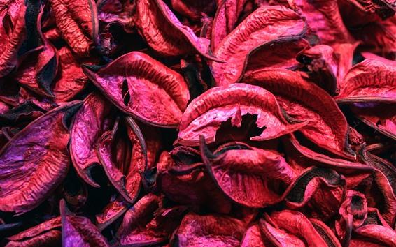 Papéis de Parede Muitas folhas secas vermelhas