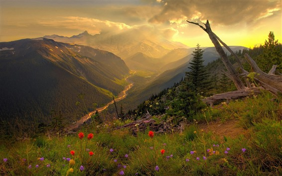 Wallpaper Mountains, top, flowers, river, valley, clouds, sun rays, morning