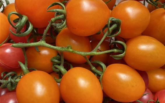 Wallpaper Orange little tomatoes, fruit close-up
