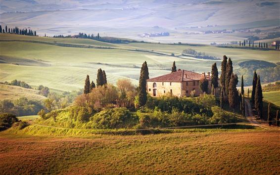 壁紙 トスカーナ、田舎、木、家、フィールド、夏、イタリア