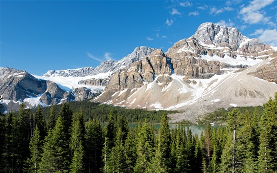 Wallpaper Banff National Park, mountain, snow, forest, trees, lake, Canada
