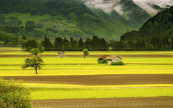 Обои Красивые пейзажи, зеленые поля, хижины, горы, деревня