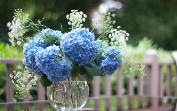 Wallpaper Blue hydrangea flowers, vase, fence