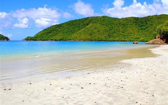 Wallpaper Caribbean, sea, island, beach