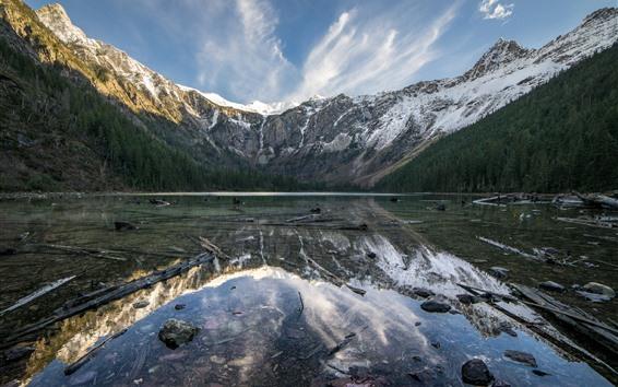 Wallpaper Glacier National Park, lake, water reflection, mountain, trees, USA