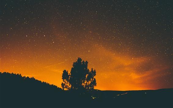 Обои Одинокое дерево, звёздная, звёзды, силуэт, ночь