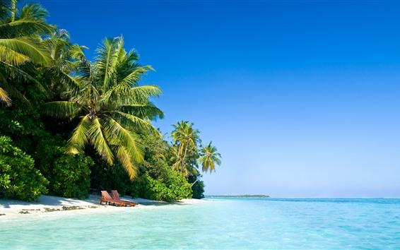 壁紙 モルディブ、ヤシの木、ビーチ、椅子、海、熱帯
